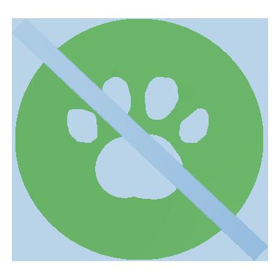szőnyegtisztítás állatok által okozott foltok eltávolítása